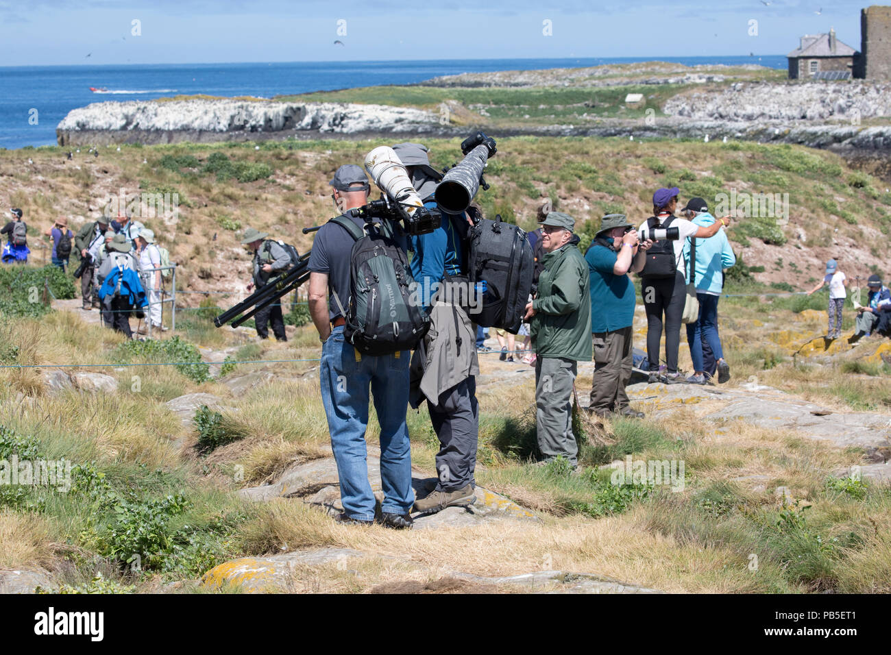 Photographers loaded with expensive camera equipment Farne Islands Northumberland UK - Stock Image