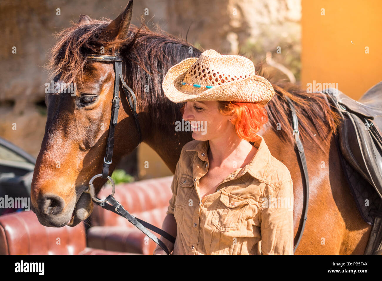 cheerful young lady in countryside prepare to ride her beautiful brown horse. white horse on the background. sunlight colors and outdoor lifestyle wit - Stock Image