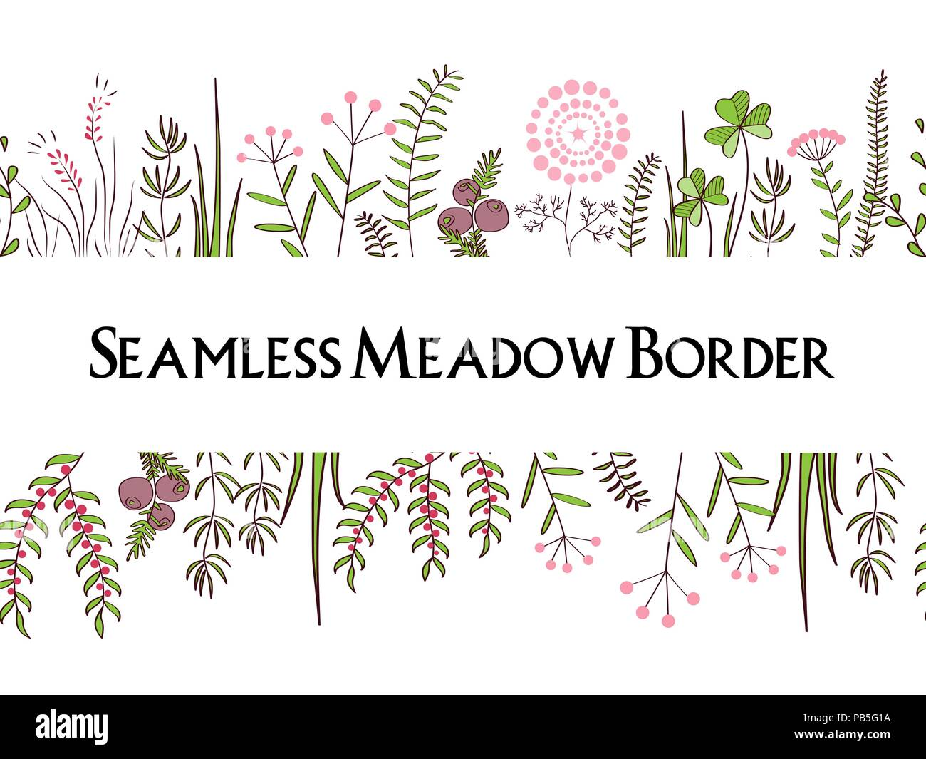 Meadow herbs seamless borders background floral illustration for meadow herbs seamless borders background floral illustration for posters greeting cards and other printing projects m4hsunfo