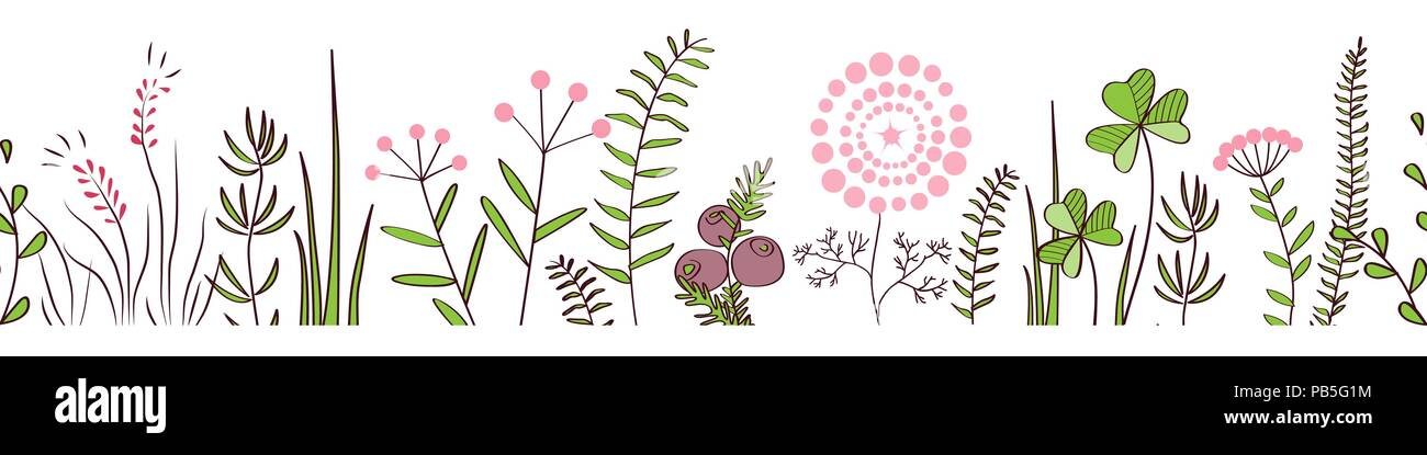 Vector Seamless Border With Forest And Meadow Plants Hand Drawn