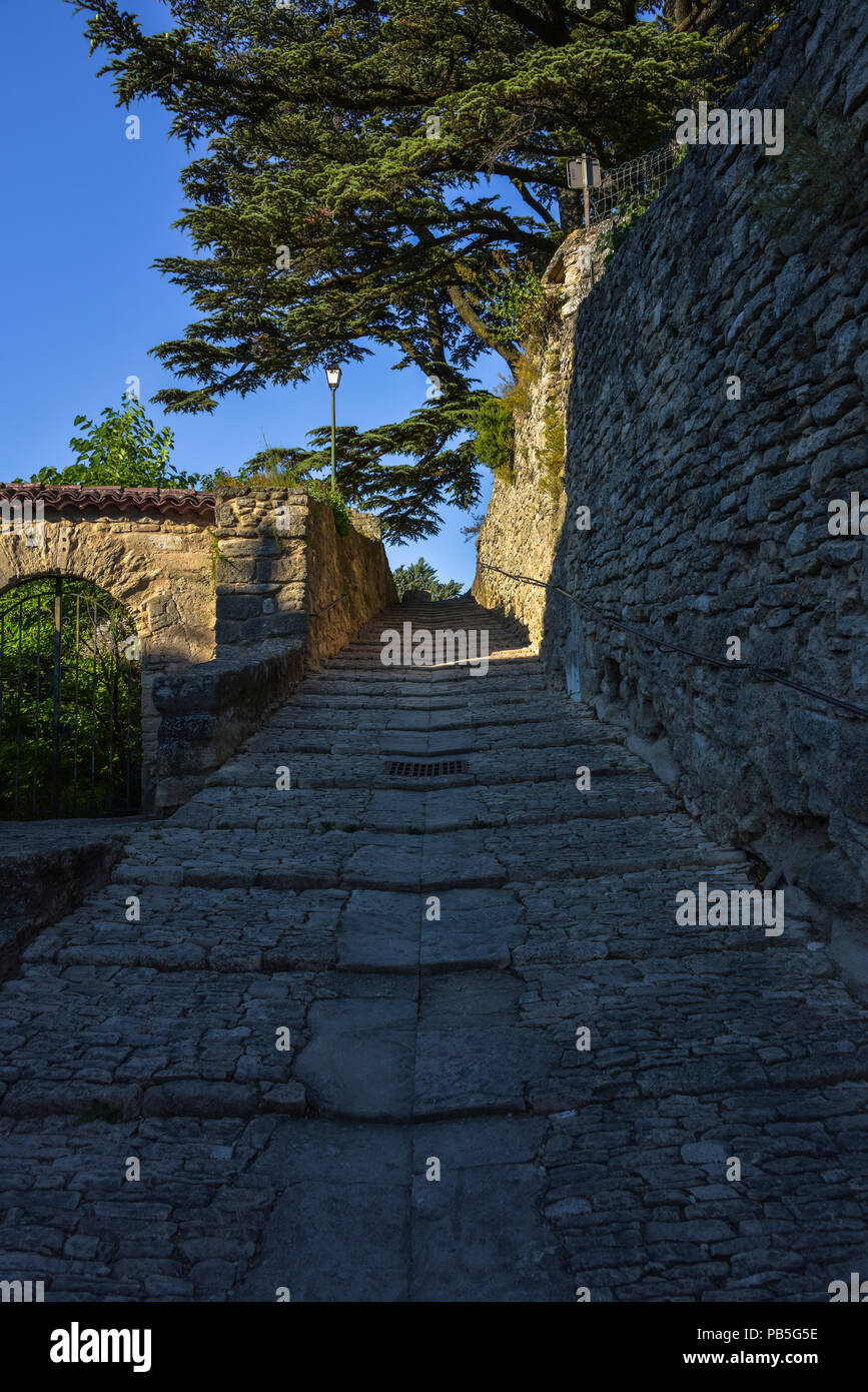 footpath in Bonnieux under typic cedar trees, Provence, France, massif of Luberon, ascent to old church of the village, Provence-Alpes-Côte d'Azur - Stock Image