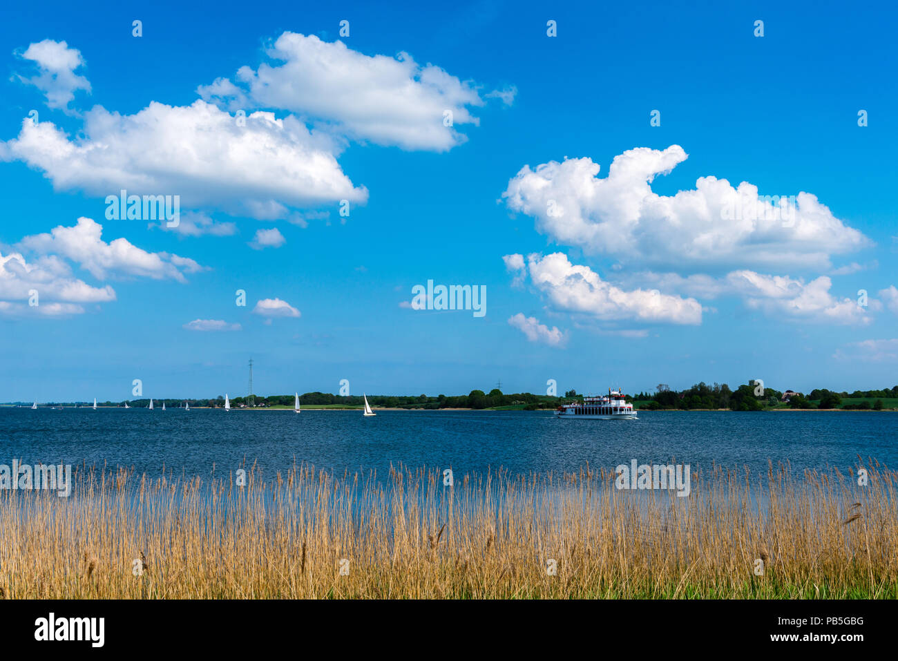 Sunny summer weather for sailing on the Schlei  Fjord, Lindaunis, landscape of Angeln, Schleswig-Holstein, Germany - Stock Image