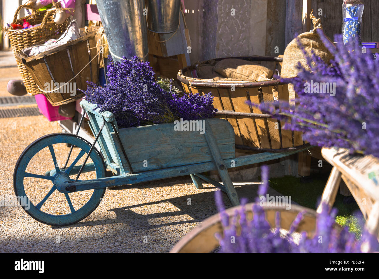 floristic decoration with lavender bushes, handcart in the village Sault, Provence, France, department Vaucluse, region Provence-Alpes-Côte d'Azur Stock Photo