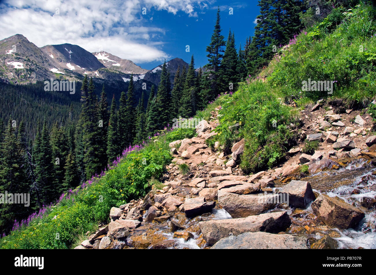 Hiking the 4th of July Trail in the Arapaho National Forest - Stock Image