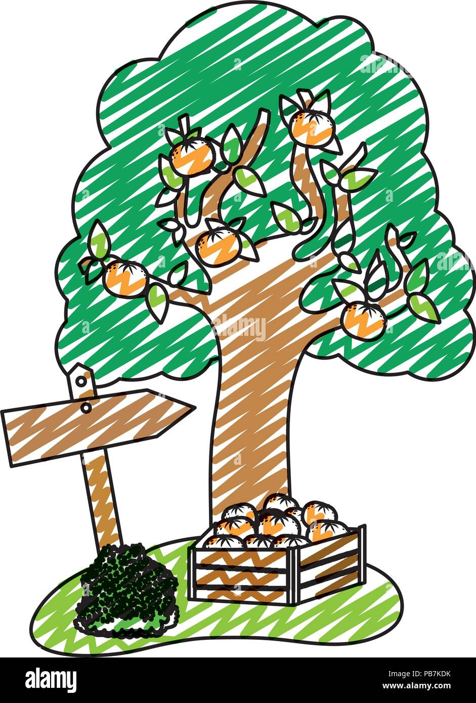 doodle farm fruit tree and oranges inside wood box - Stock Vector