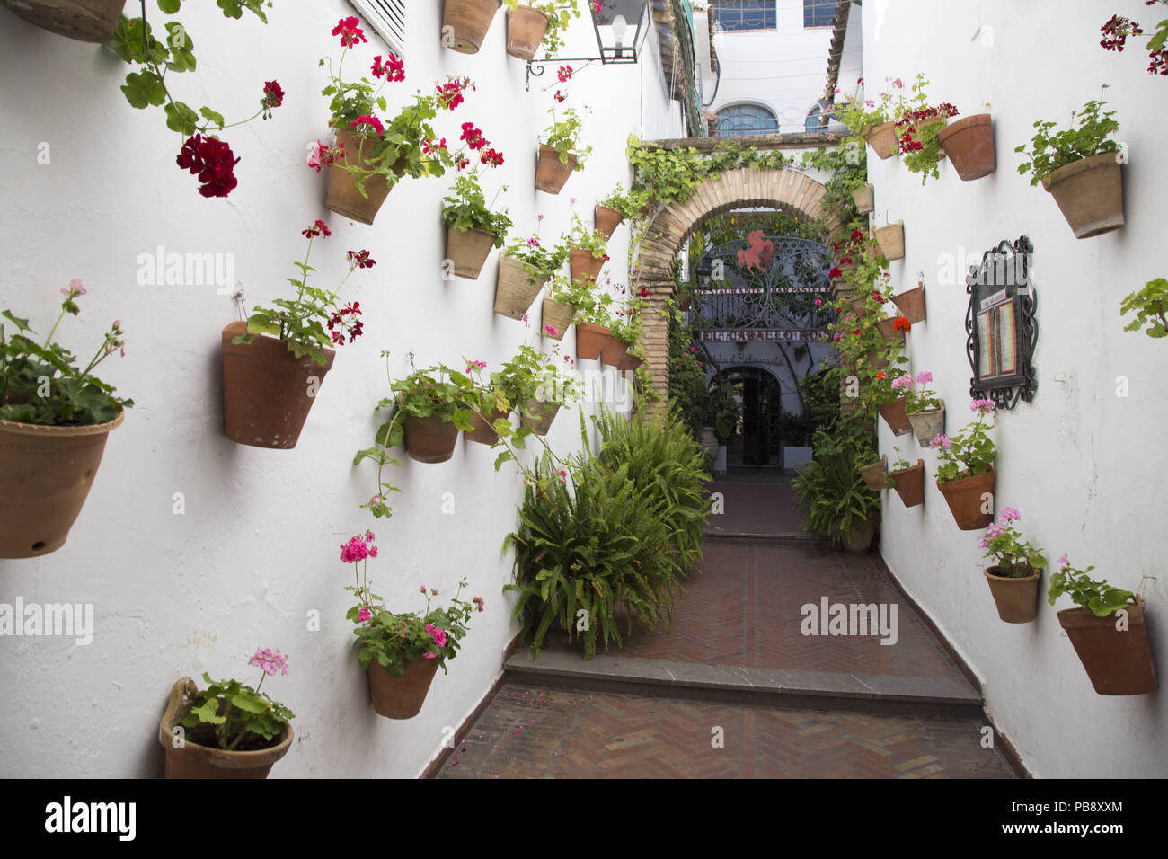 June 10, 2018 - CóRdoba, Spain - Typical Cordovan patio with flowers.Córdoba was the capital of the Later Hispania in the times of the Roman Republic, or of the Bética province during the Roman Empire and the Caliphate of Córdoba during the Muslim era. Credit: Lito Lizana/SOPA Images/ZUMA Wire/Alamy Live News Stock Photo