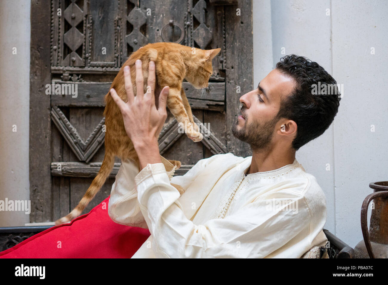 Young muslim man holding a yellow cat in front of a decorated wall - Stock Image