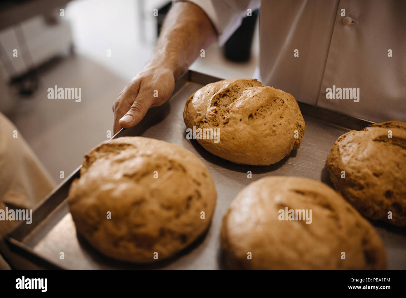 Close up of freshly baked bread on a baking tray in hand of a baker. Man moving a tray of freshly baked bread in a bakery. Stock Photo