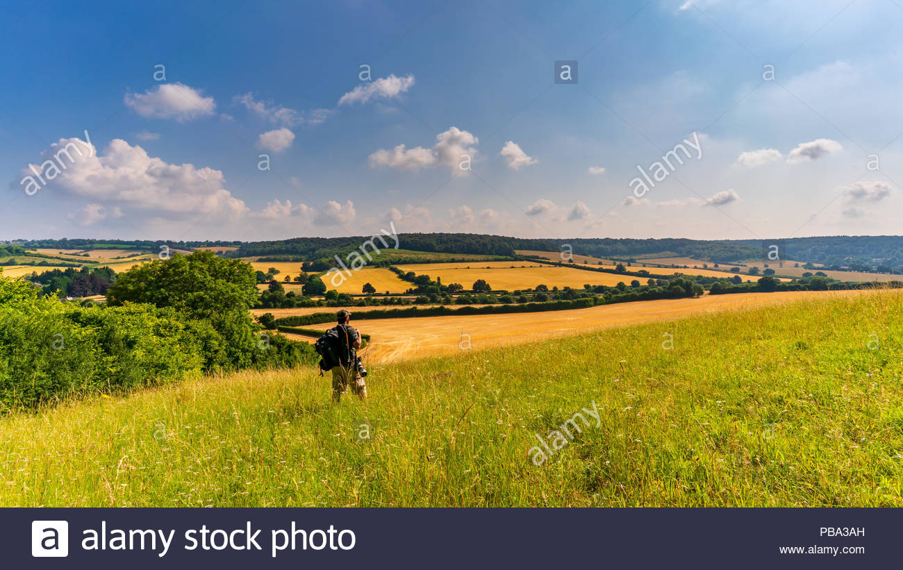 A hiker taking in the view while hiking through the hills, valleys and fields of The Chiltern Hills countryside - Stock Image
