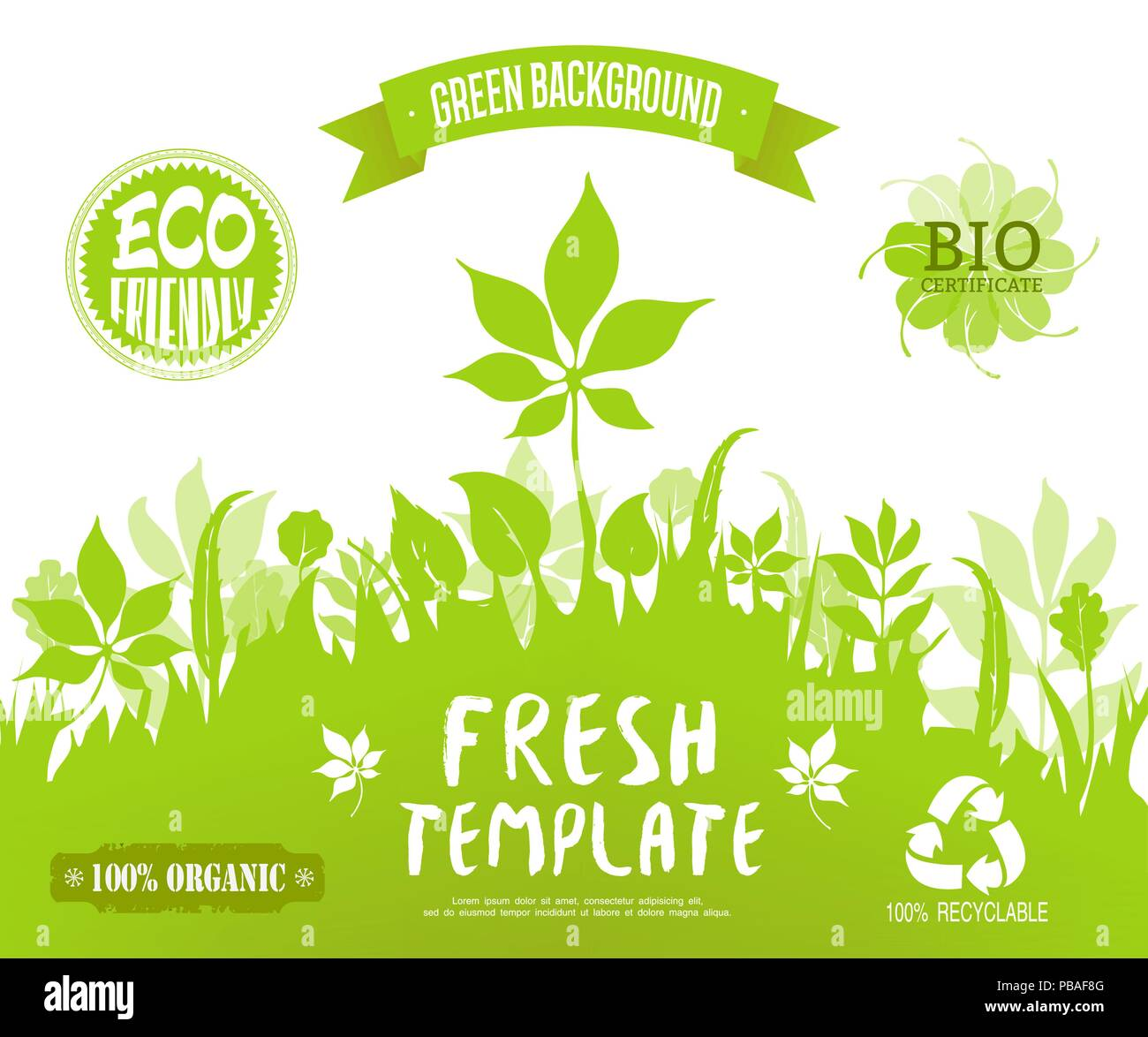 100 Organic Eco Friendly Bio Certificate Recyclable Labelseen