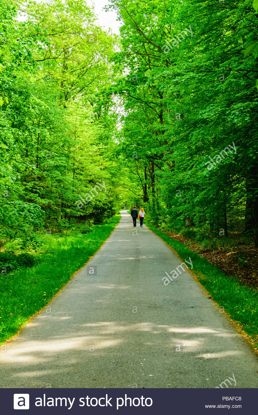 Couple holding hands in Katowice Forest Park in Katowice, Poland Stock Photo