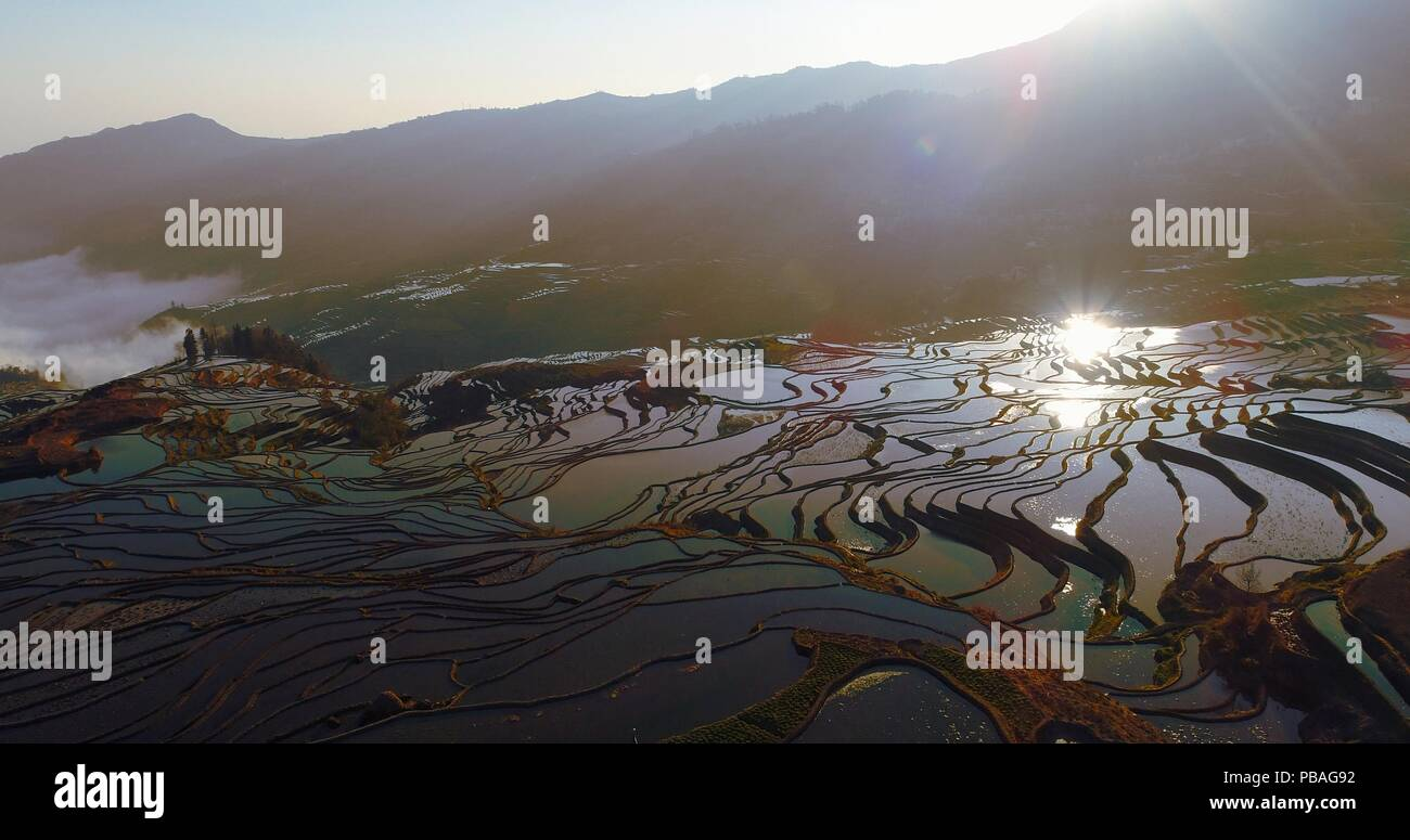 Aerial morning scene of water-filled Rice Terraces and reflections of rising sun on the water surfaces. UNESCO World Heritage Site, Yuanyang, Yunnan. - Stock Image