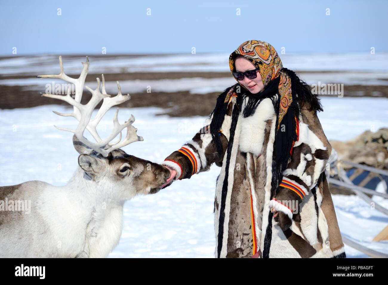 Carolina Serotetto, Nenet teenager dressed in traditional winter coat made of reindeer skin with  pet ''akva'' Reindeer (Rangifer tarandus). Yar-Sale district, Yamal, Northwest Siberia, Russia. April 2016. - Stock Image