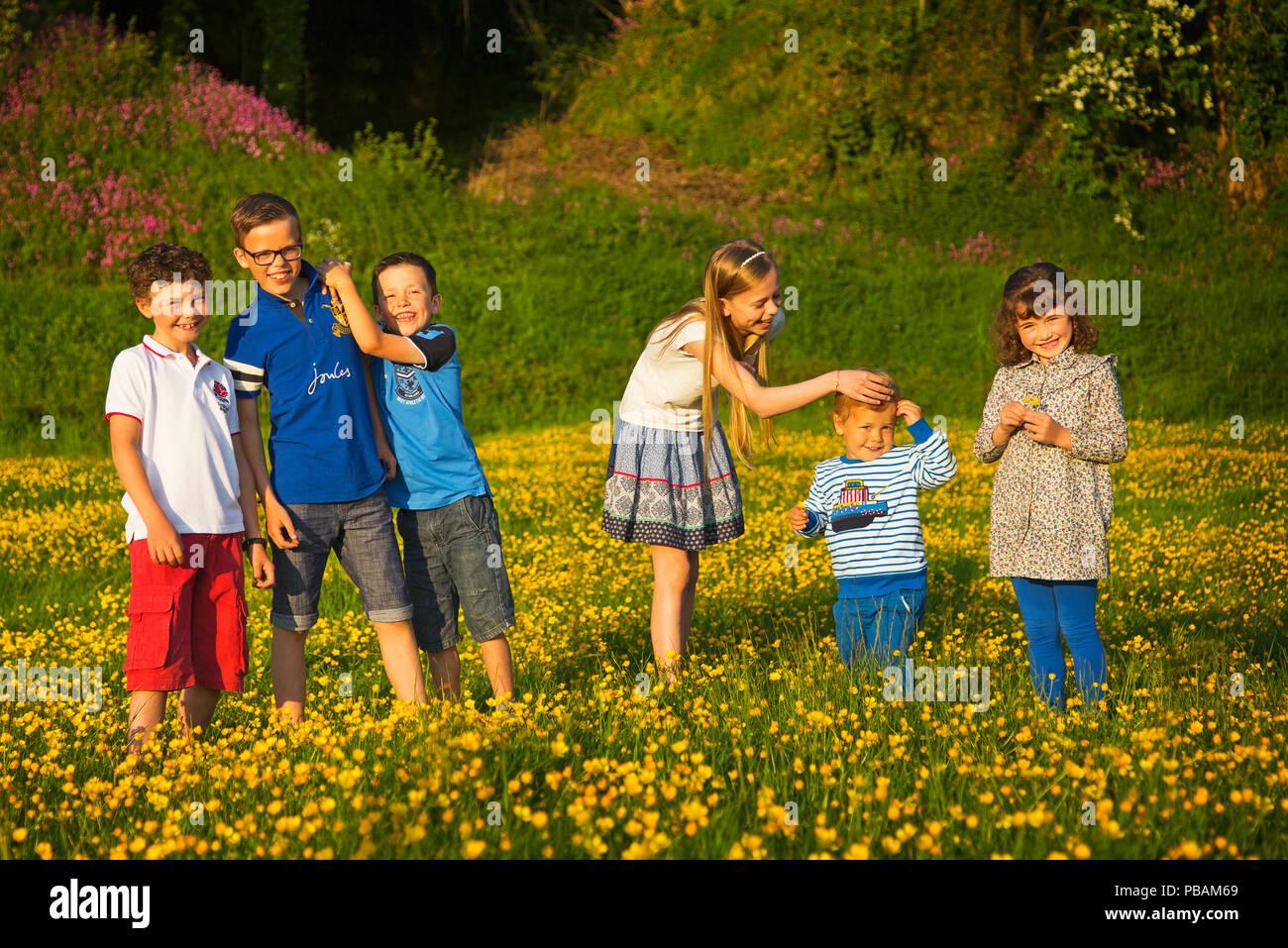 A group portrait of six children in a field of flowers,Devon UK - Stock Image