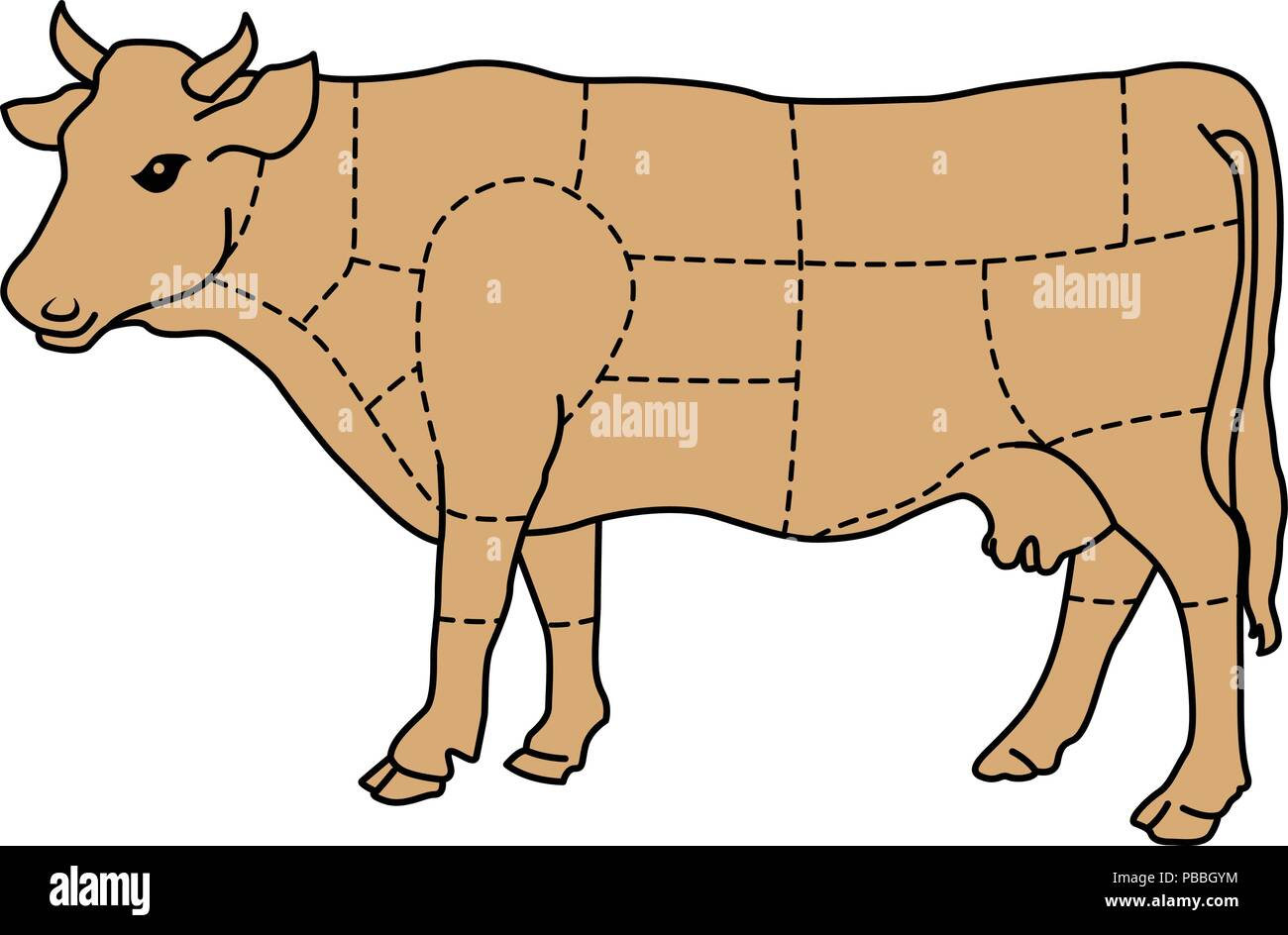 Cartoon cow - cattle meat diagram - Stock Image