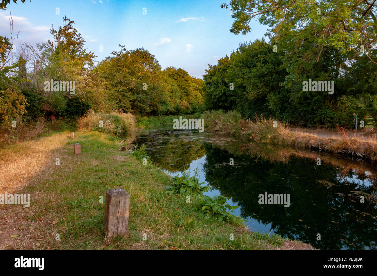 Basingstoke Canal North Warnborough - Stock Image