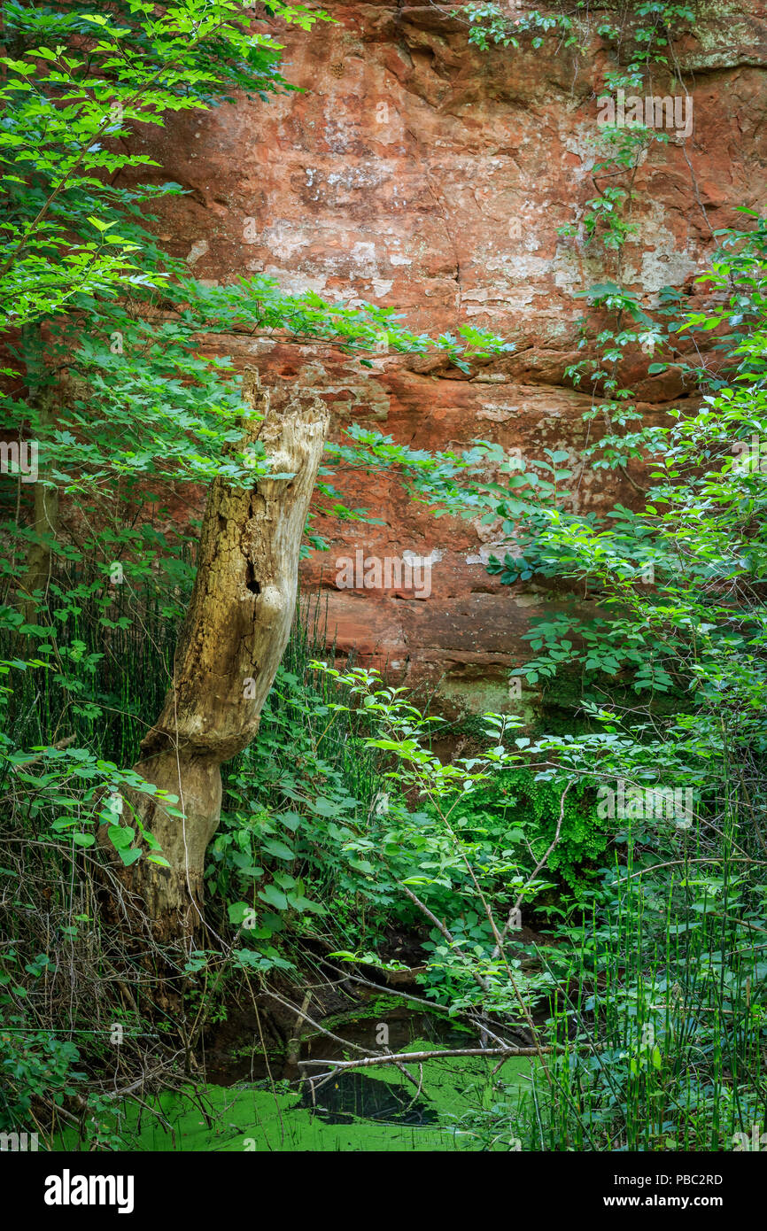 Canyon Walls in Oklahoma's Red Rock Canyon State Park - Stock Image