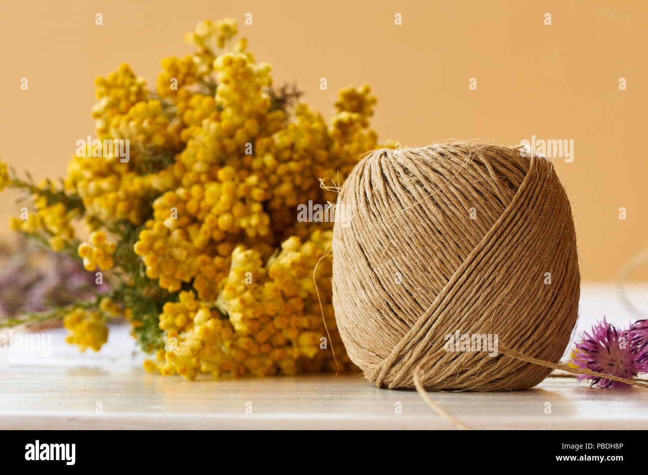 Cord skein and common shrubby everlasting (Helichrysum stoechas) yellow flowers over a table ready for preparing a flowers bouquet (Formentera,Spain) - Stock Image