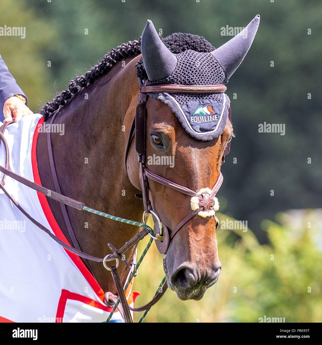 Sussex, UK. 28th July 2018. Winner. Laura Kraut riding Nouvelle. USA. The Bunn Lesiure Salver. Prizegiving. Showjumping. Longines FEI Jumping Nations Cup of Great Britain at the BHS Royal International Horse Show. All England Jumping Course. Hickstead. Great Britain. 28/07/2018. Credit: Sport In Pictures/Alamy Live News - Stock Image
