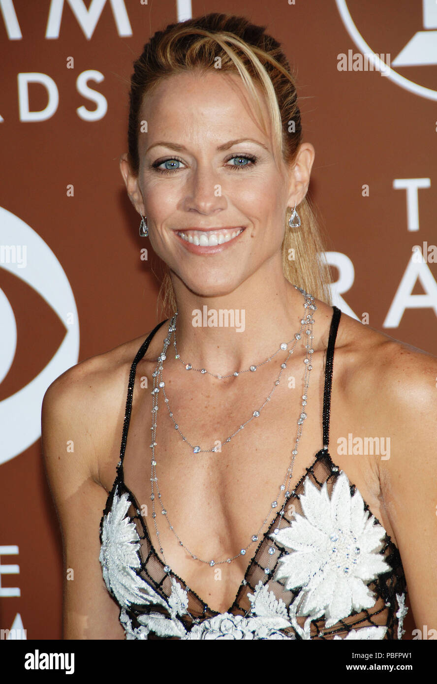 Sheryl Crow arriving at the 48th Grammy Awards at the  Staples Center In Los Angeles, Wednesday February 8, 200612_CrowSheryl140 Red Carpet Event, Vertical, USA, Film Industry, Celebrities,  Photography, Bestof, Arts Culture and Entertainment, Topix Celebrities fashion /  Vertical, Best of, Event in Hollywood Life - California,  Red Carpet and backstage, USA, Film Industry, Celebrities,  movie celebrities, TV celebrities, Music celebrities, Photography, Bestof, Arts Culture and Entertainment,  Topix, headshot, vertical, one person,, from the year , 2006, inquiry tsuni@Gamma-USA.com - Stock Image