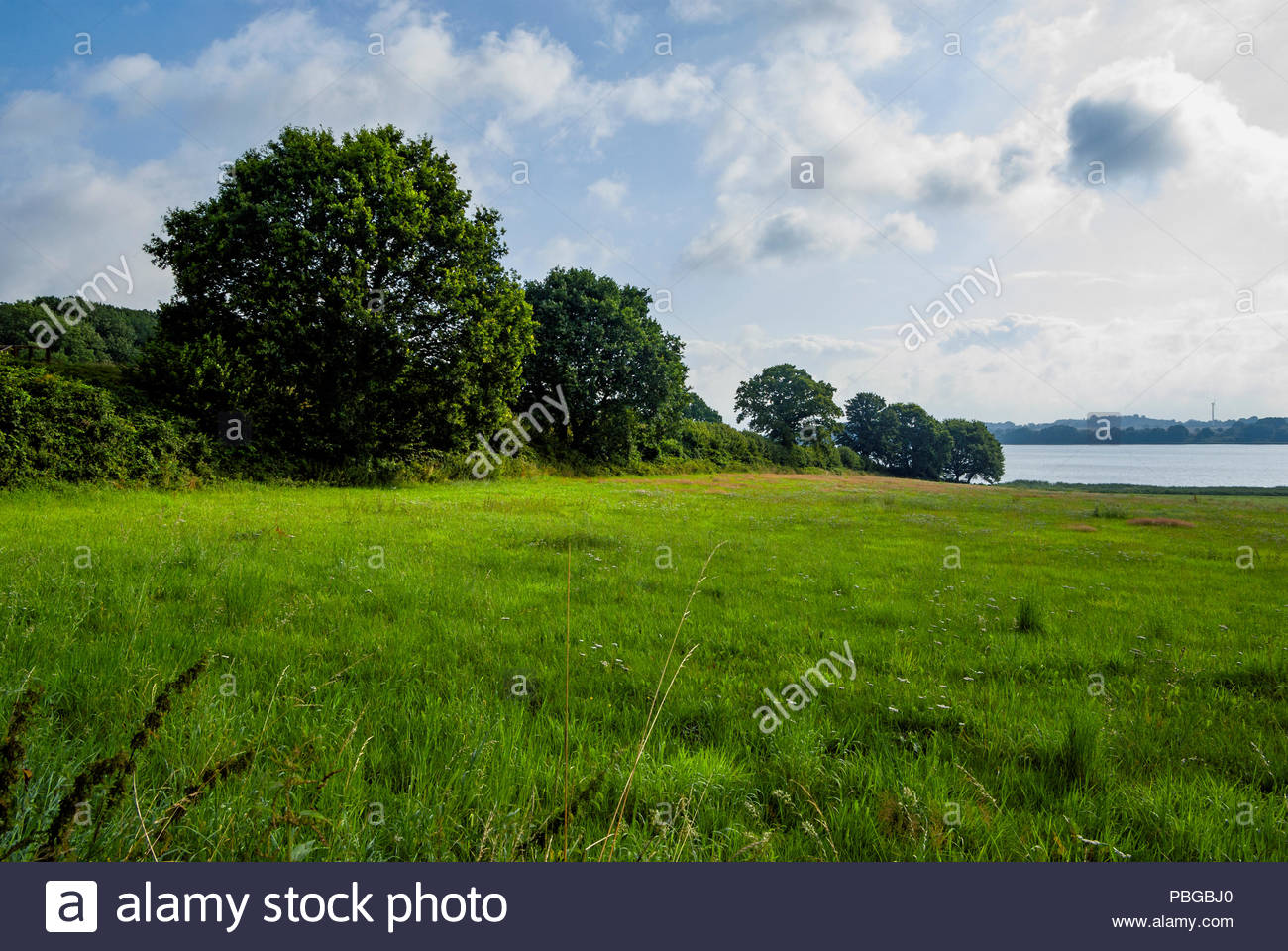The Danevirke rampart that encircles Haithabu reaches to the Haddebyer Noor - Stock Image