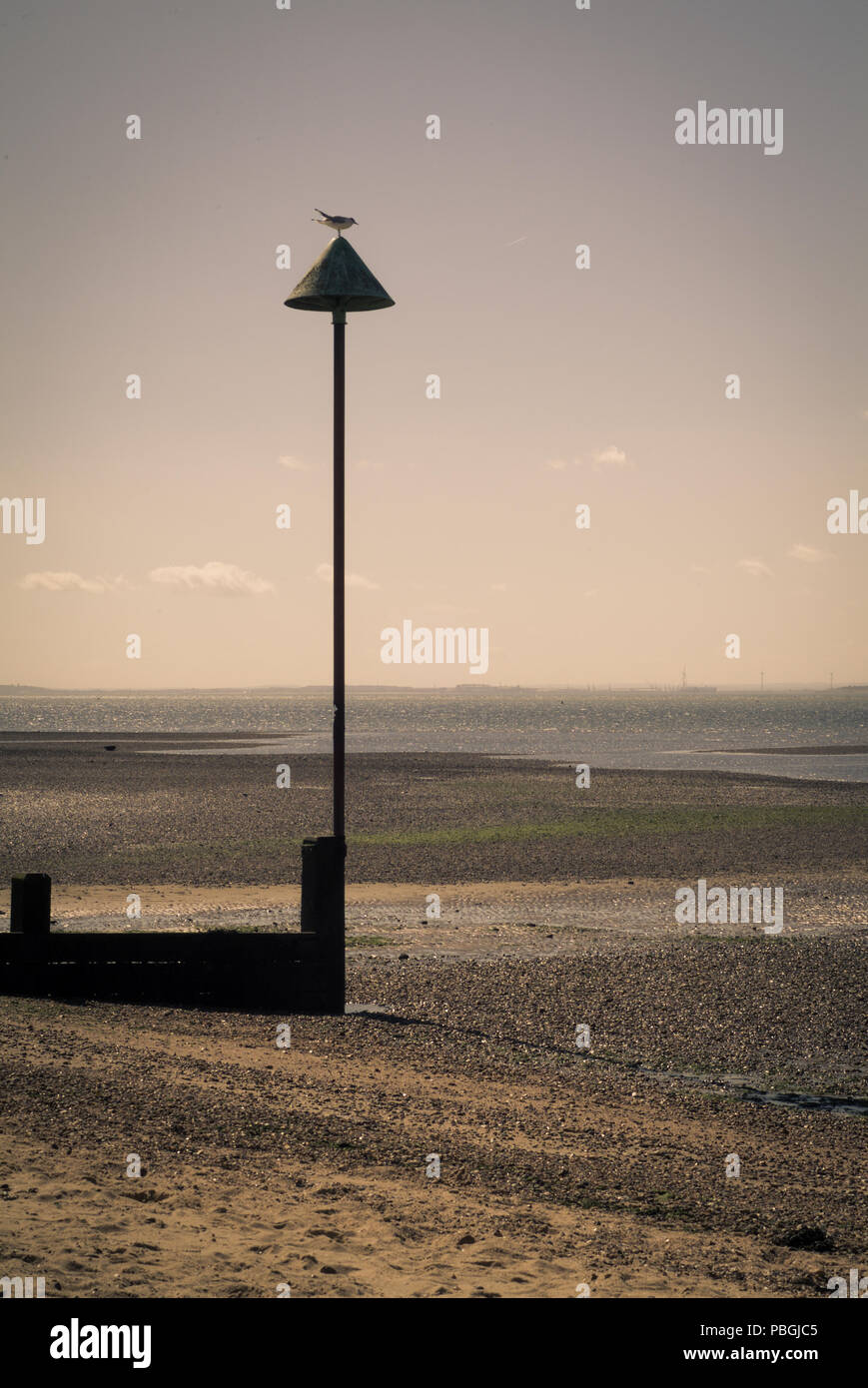 a bird sitting on a post at Chalkwell Beach in Essex, UK Stock Photo