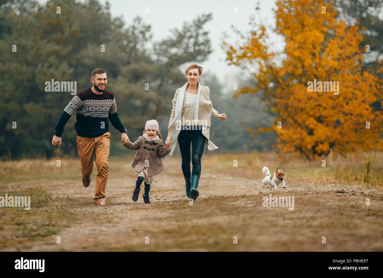 Happy parents with their daughter hold hands and run at forest path next to dog during walk in autumn forest. - Stock Image