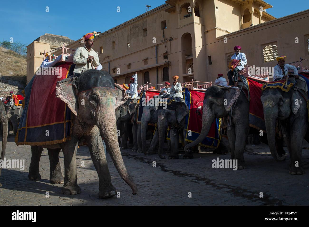 Amber Fort, Jaipur, Rajasthan, India, Asia. - Stock Image