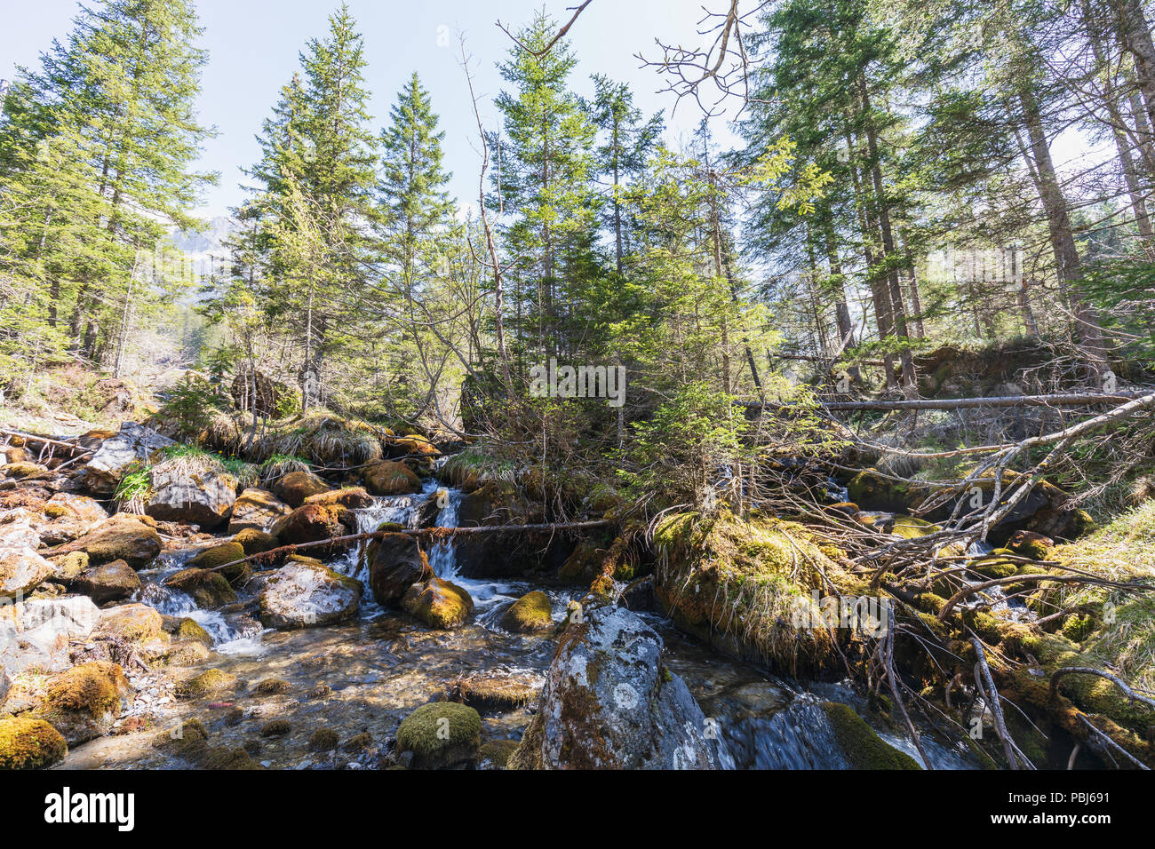 Beautiful small river near oeschinensee in kandersteg switzerland Stock Photo