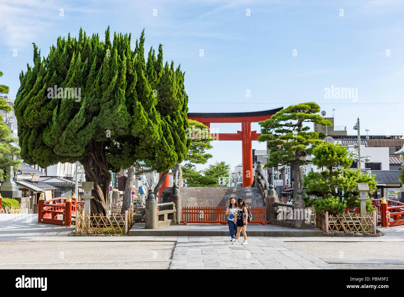 Two Japanese girls at the gates of the Hase-dera Buddhist Temple, Kamakura near Tokyo, Japan. A large green tree with branches growing upwards. - Stock Image