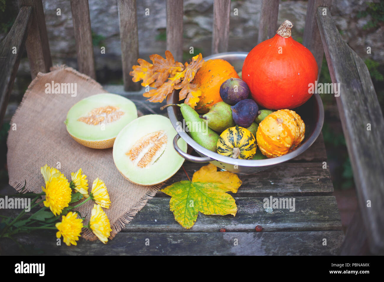 Autumn nature. Fall fruit on wood. Thanksgiving. autumn vegetables on an old chair in the garden, free space for text, yellow flowers Stock Photo