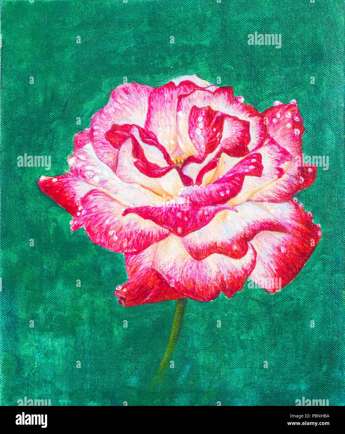 Red rose flower painting on green background with acrylic