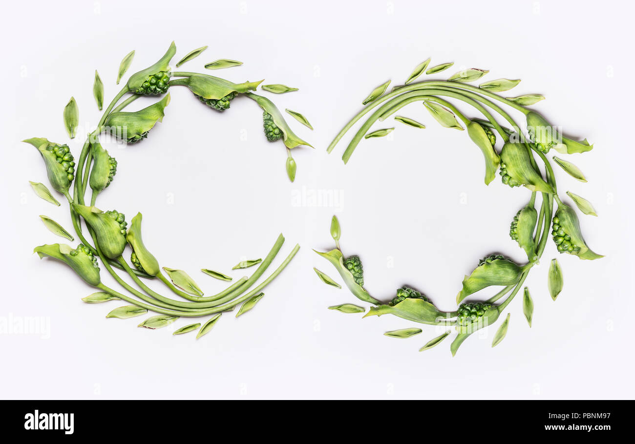 Decorative Botanical Flower Double Wreath Frames Made Of Green