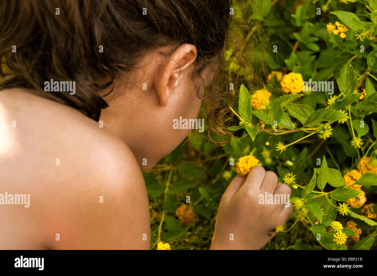 Tousled girl with curly hair picking a small yellow flower. Blonde little girl in bikini playing with the plants of the pool on summer holidays. - Stock Image