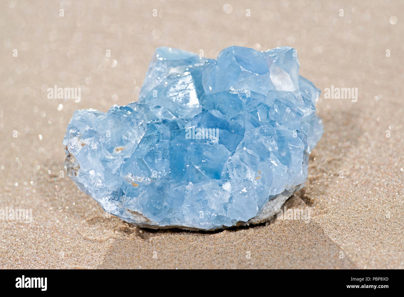 Blue Celestite cluster from Madagascar lying on wet sand on the beach at sunrise. - Stock Image
