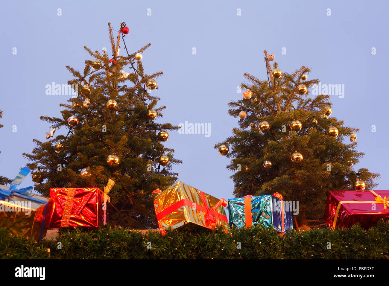 Illuminated fir trees and Christmas packages, Christmas decoration at dusk, Bremen, Germany, Europe  I Beleuchtete Tannenbäume und  Weihnachtspakete,  - Stock Image