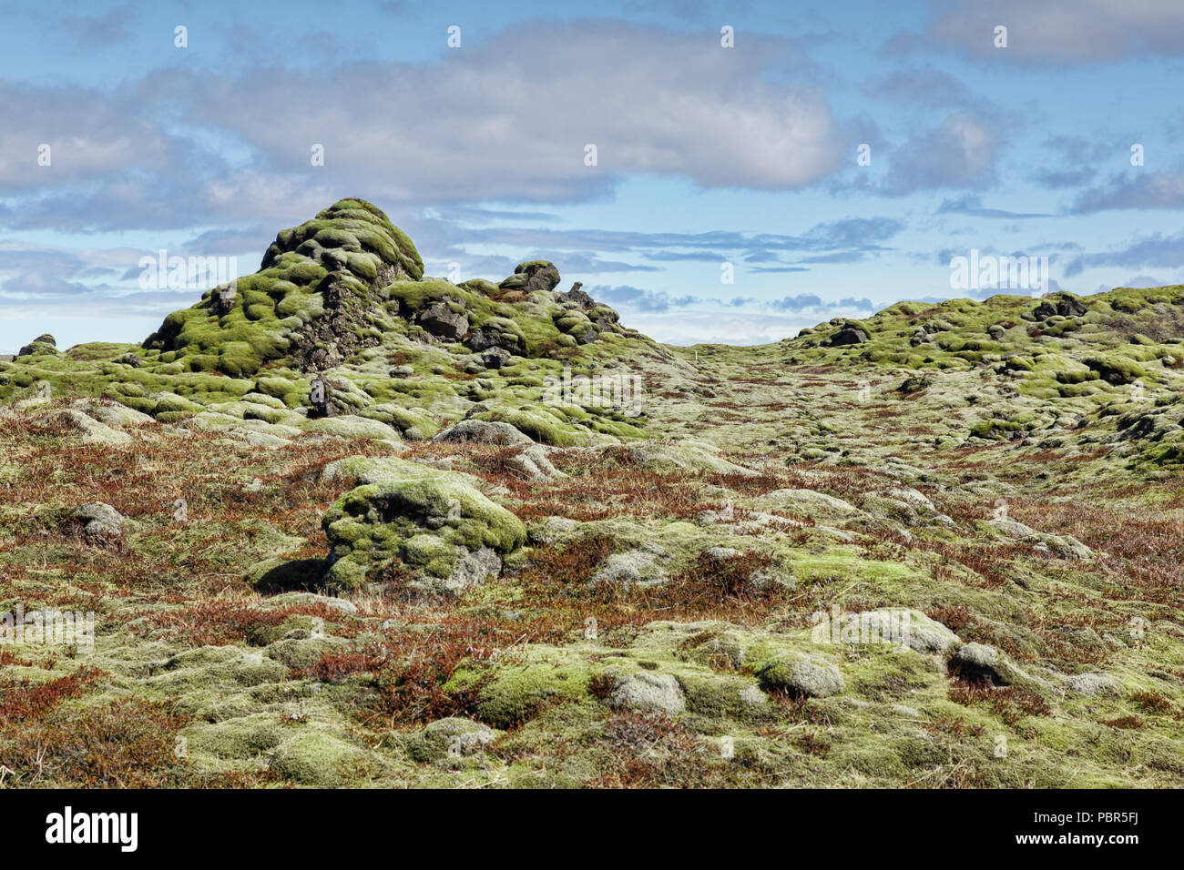 Moss covered ancient lava field at Skaftareldahraun, South Iceland - Stock Image