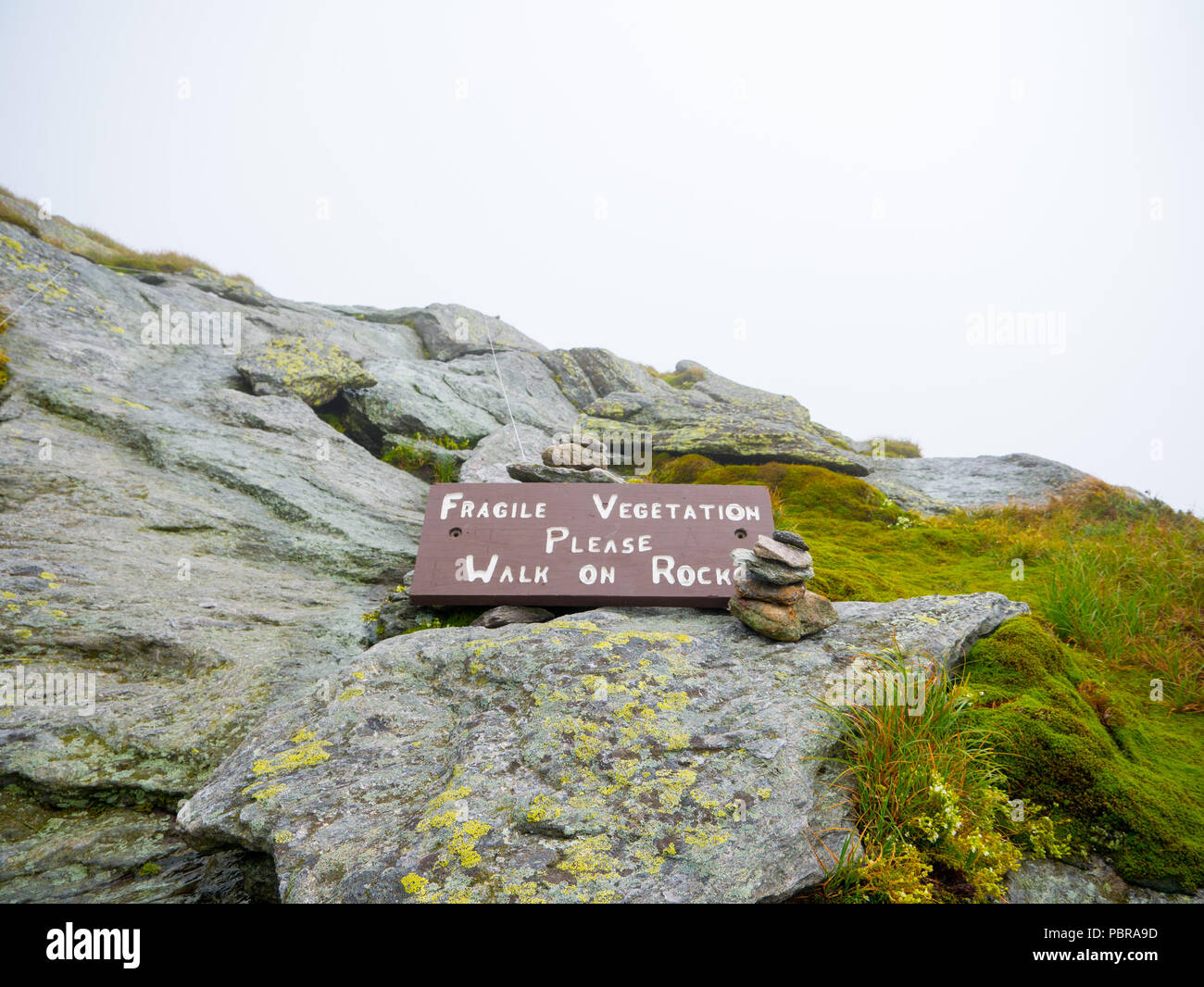 'Fragile vegetation'. Can be killed by footsteps. Please stay on trails.' sign in the Camels Hump mountain in Vermont - Stock Image