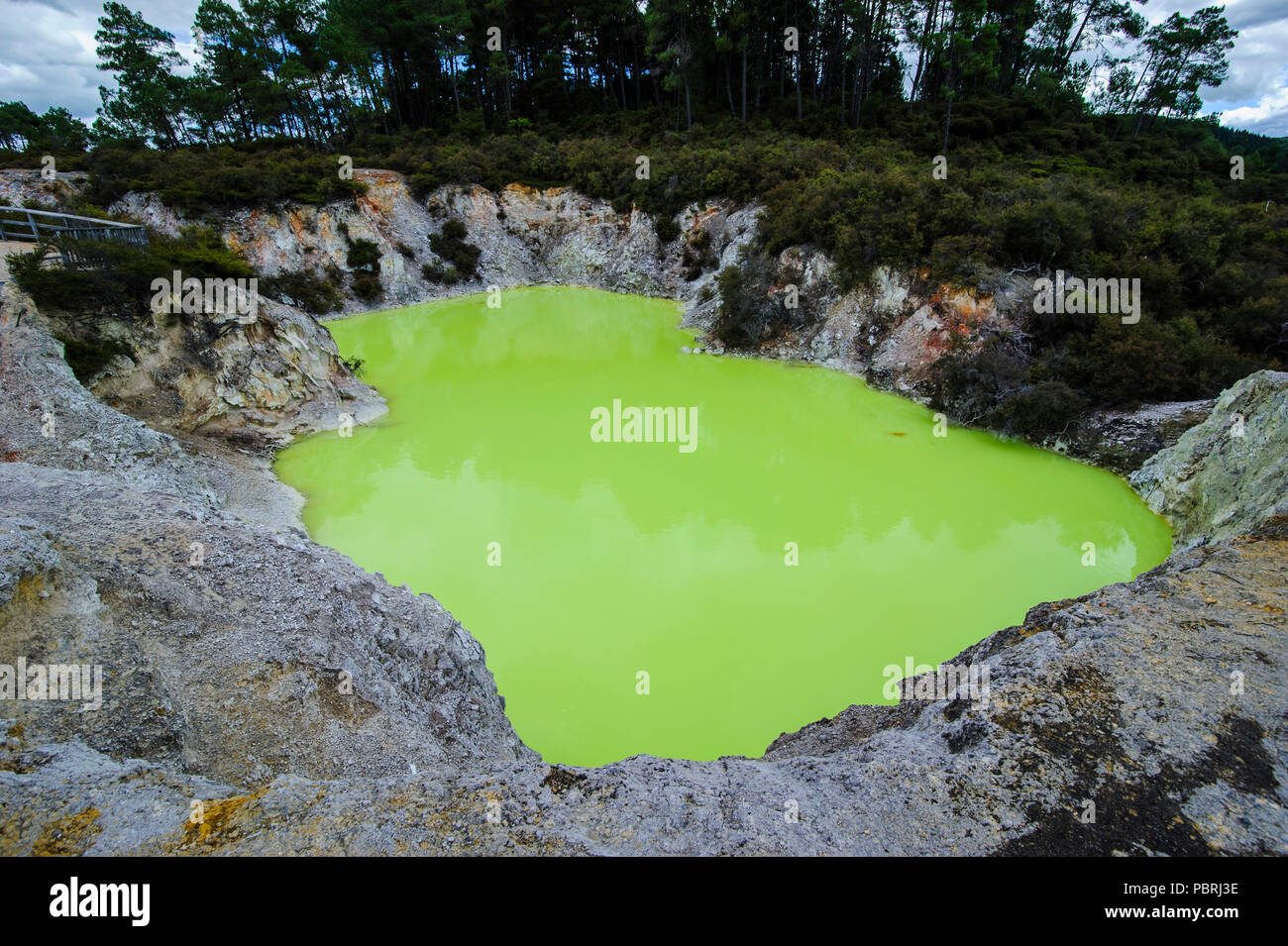Very green acid crater in the Wai-O-Tapu Volcanic Wonderland, North Island, New Zealand - Stock Image