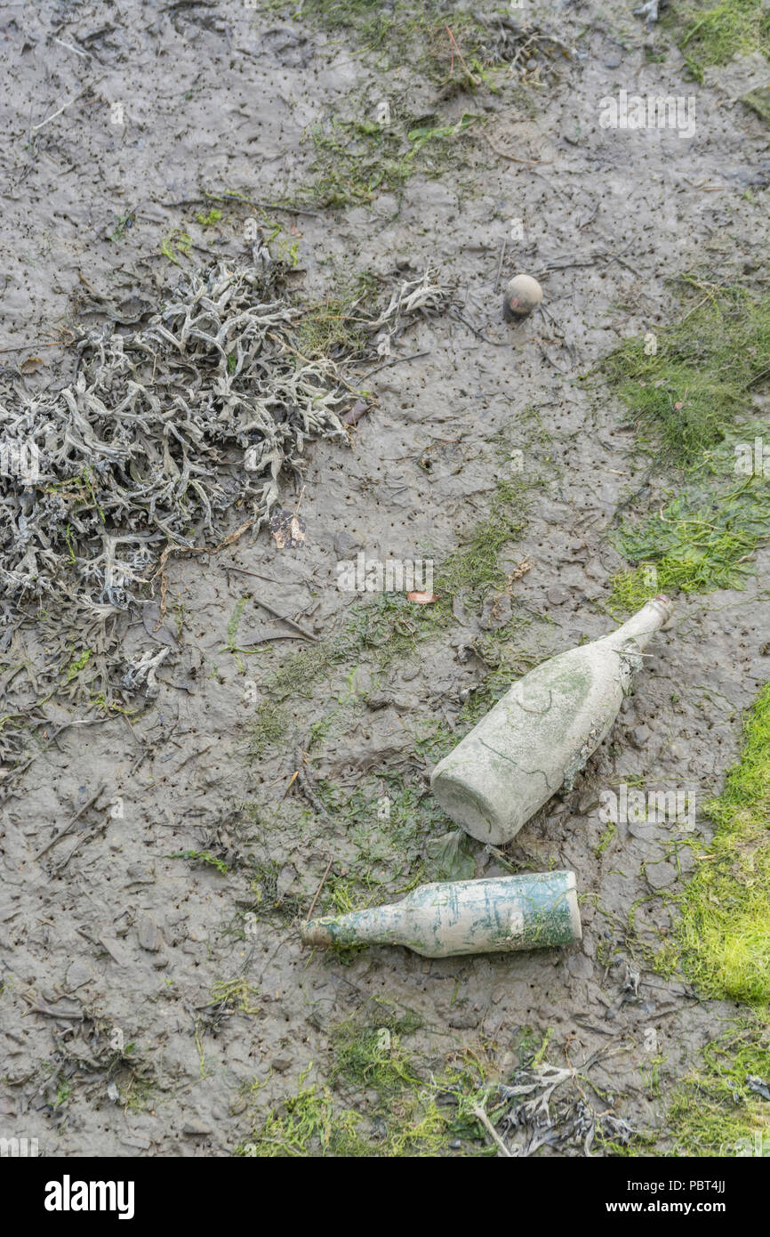 Two old glass bottles in the muddy flats of an estuarine river after the tide has gone down. - Stock Image