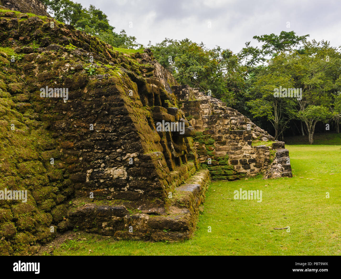 Rests of the Maya civilization in Belize - Stock Image