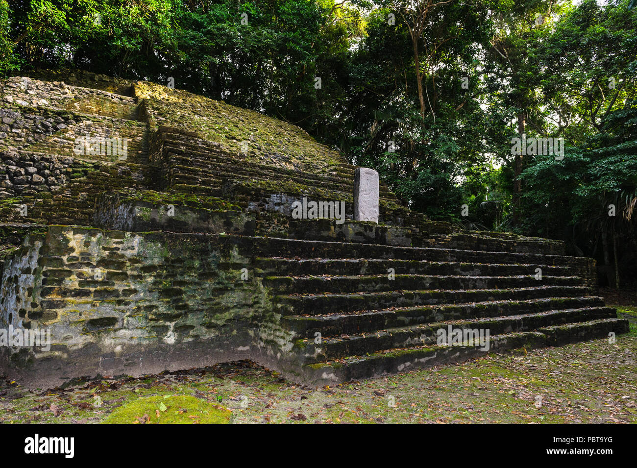 Maya civilization constructions in Belize - Stock Image
