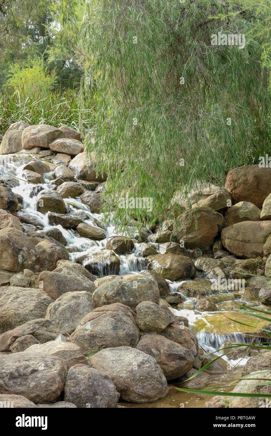 Stream in Water Garden Kings Park, Perth, Western Australian, representing landscape of 2.5billion years old granite bedrock of Darling Scarp nearby. - Stock Image