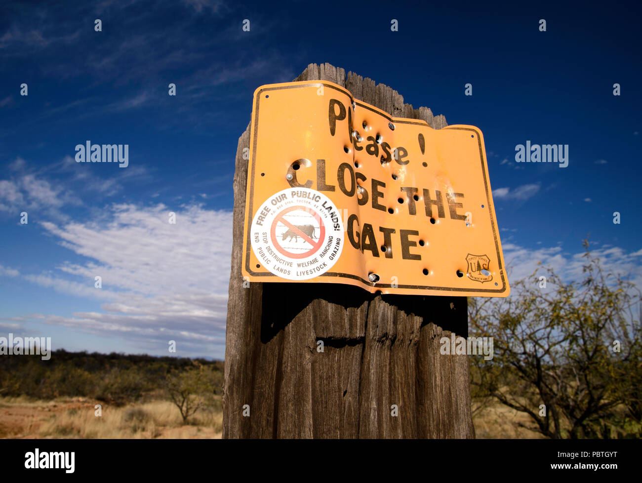 Signs opposing livestock grazing on public lands where cattle graze are posted by Free Our Public Lands! along the road to Elephant Head, Coronado Nat Stock Photo