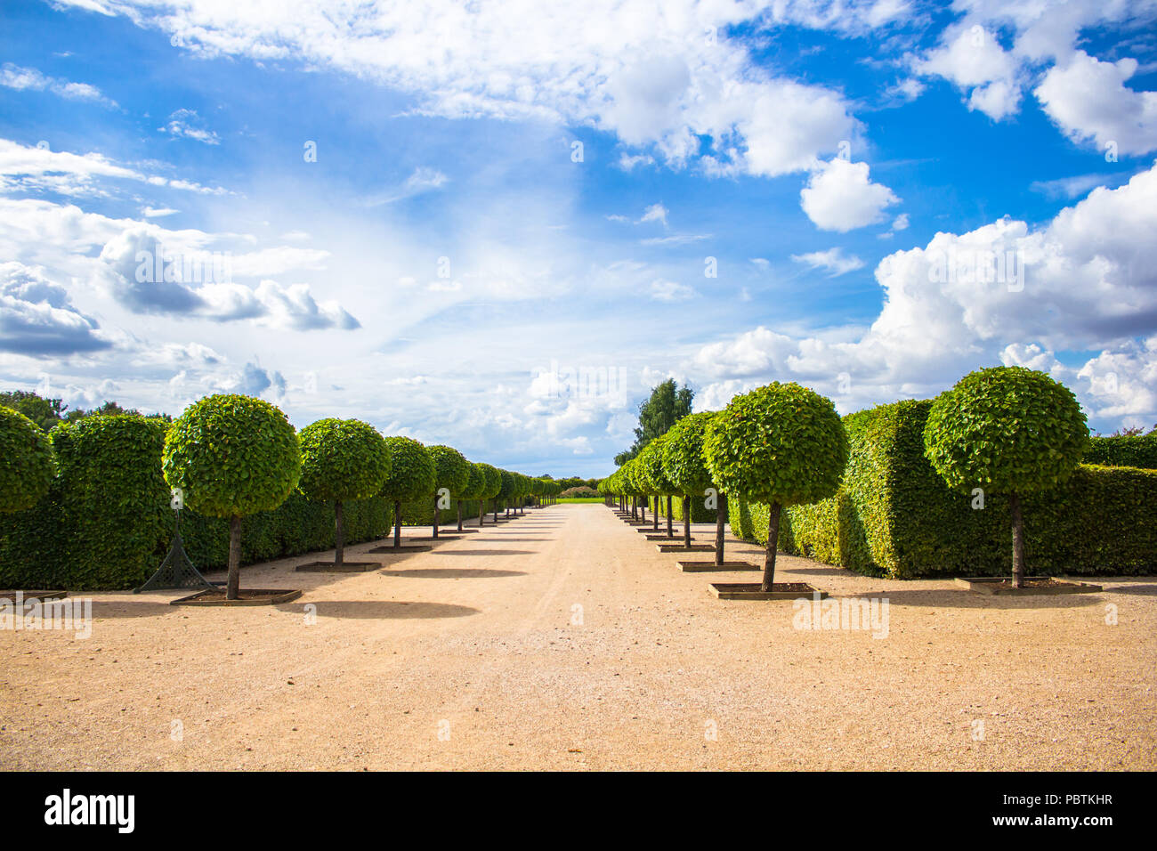 Park of Rundale palace - Stock Image