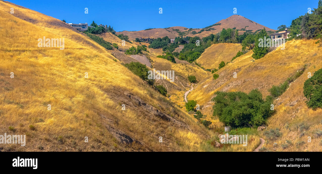 Homes and hiking trails among grassy hills - Stock Image