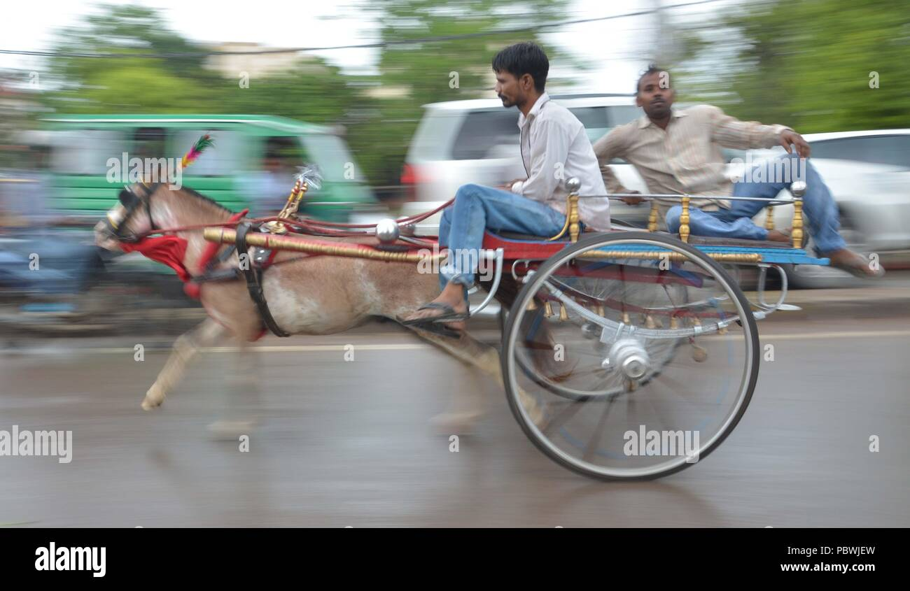 Wire Cart Race - WIRE Center •