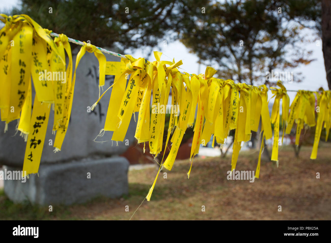 South Korean Hope Ribbons - Stock Image
