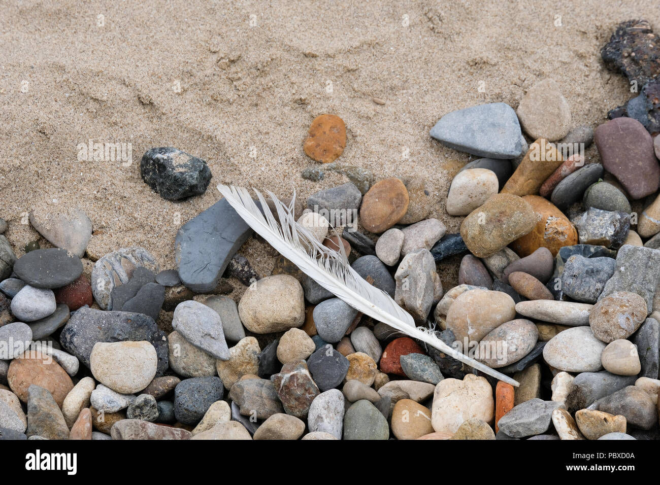Rubbish and garbage washed up on the beaches of Yorkshire by the tides - Stock Image