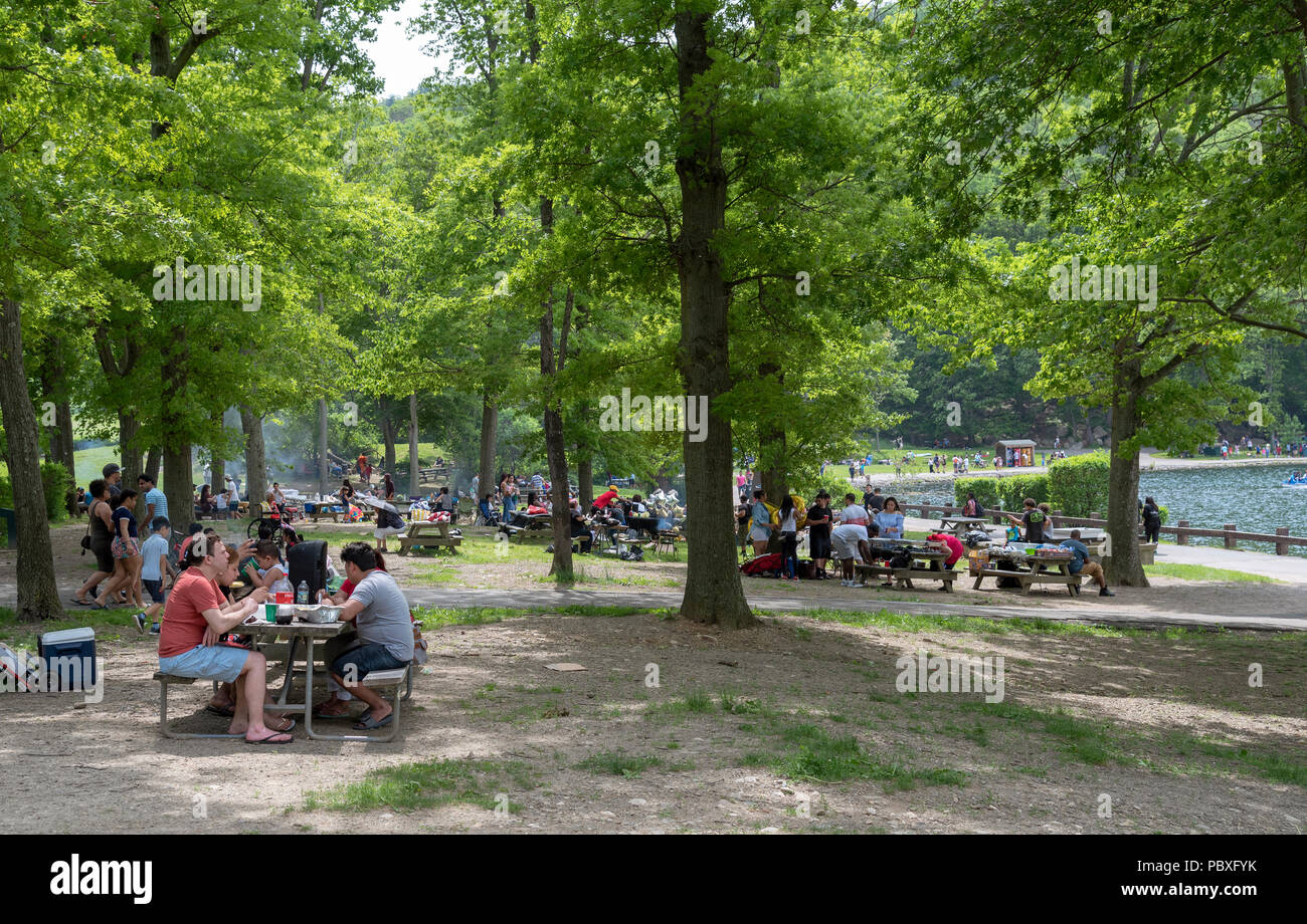 Bear Mountain National Park, Rockland County, New York State, USA. Visitors enjoying the park - Stock Image